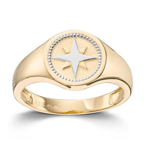 Mestergull Trendy signetring i gult gull MESTERGULL Ring